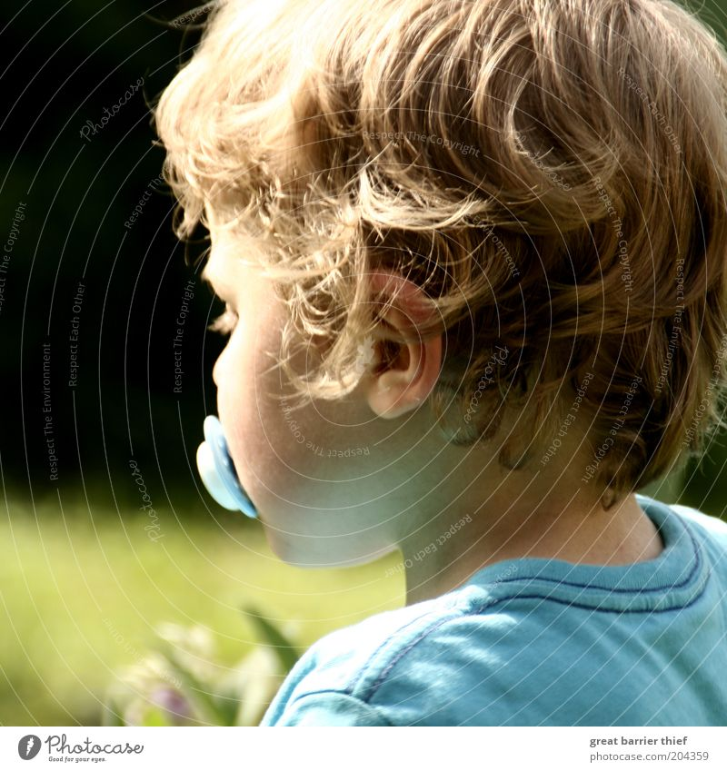 Human being Child Green Blue Summer Boy (child) Garden Hair and hairstyles Head Wait Masculine Ear Infancy Fatigue Toddler Light blue