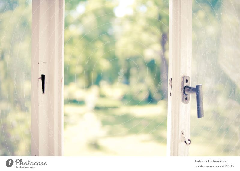 Nature White Green Tree Summer Relaxation Window Warmth Bright Park Living or residing Wellness Idyll Window pane Door handle Opening
