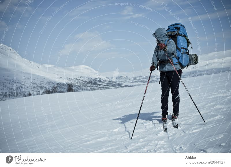 Skier with rucksack in a snowy landscape, looking backwards Senses Calm Vacation & Travel Adventure Winter Winter vacation Skis Young woman Youth (Young adults)