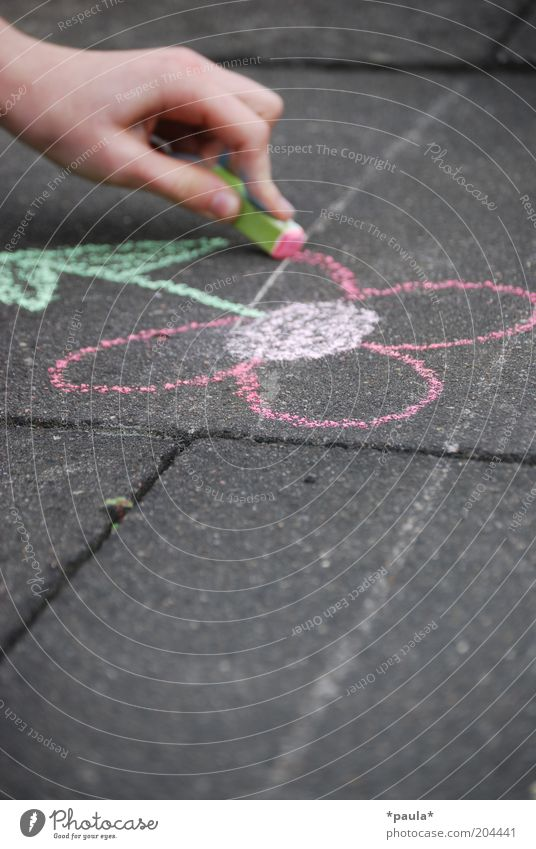 child pleasures Joy Children's game Hand Fingers 1 Human being Art Painter Flower Street Blossoming Draw Playing Dream Simple Friendliness Beautiful Uniqueness