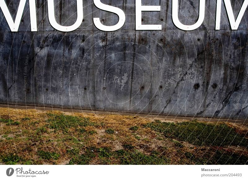 Mumuseum Art Exhibition Museum Work of art Painting and drawing (object) Sculpture Park Wall (barrier) Wall (building) Facade Tourist Attraction Stone