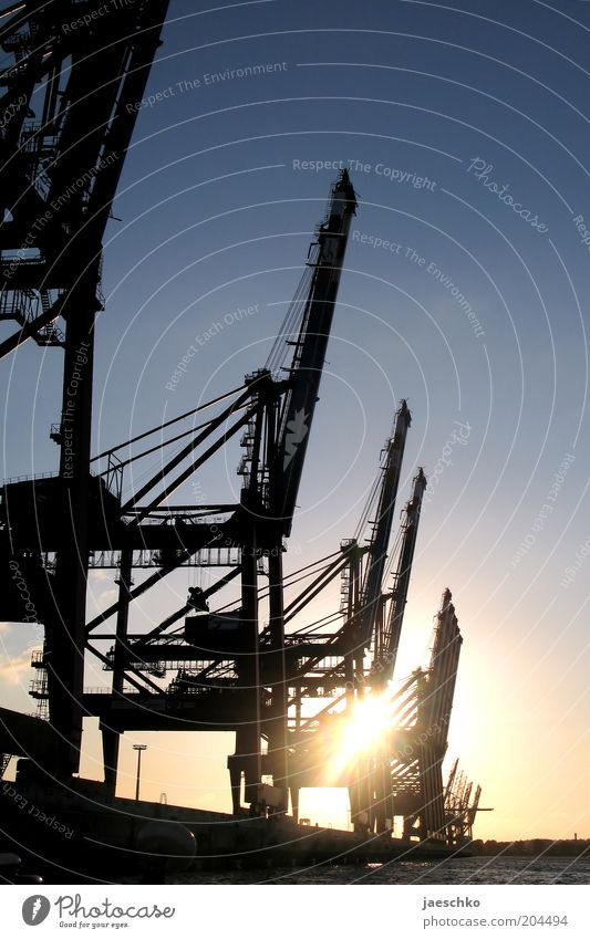 Hamburg Industry Modern Logistics Romance Harbour Economy Navigation Beautiful weather Crane Stagnating Crisis Dock Cloudless sky Consign Dockside crane