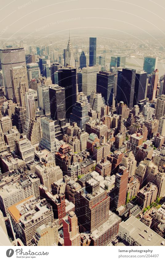 Big city canyons Advancement Future New York City Manhattan USA Americas Downtown Skyline Overpopulated House (Residential Structure) High-rise Bank building