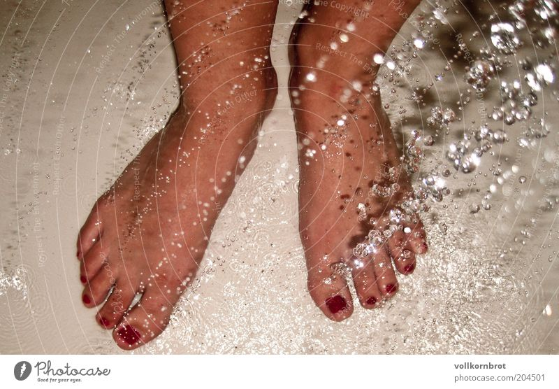 Water Red Feet Drops of water Wellness Swimming & Bathing Human being Well-being Toes Cosmetics Nail polish Take a shower