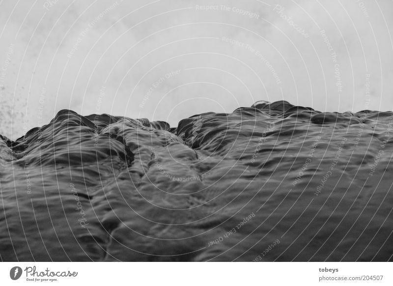 Nature Water Ocean Environment Emotions Moody Waves Elements Storm Gale Surf Black & white photo Detail White crest Swell Pattern