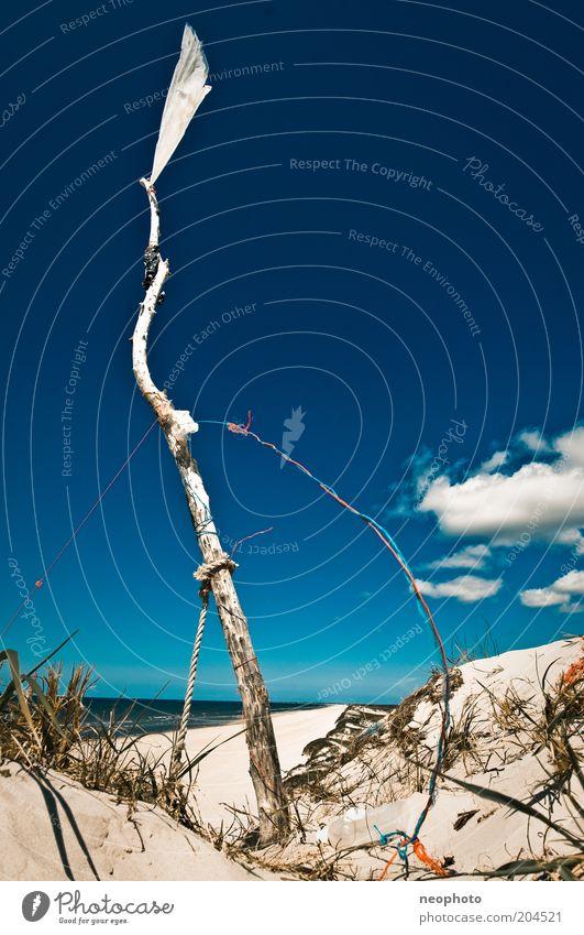 Sky White Ocean Blue Freedom Coast Wind Success Flag Peace Sign Upward Tree trunk Beach dune Blow Blue sky