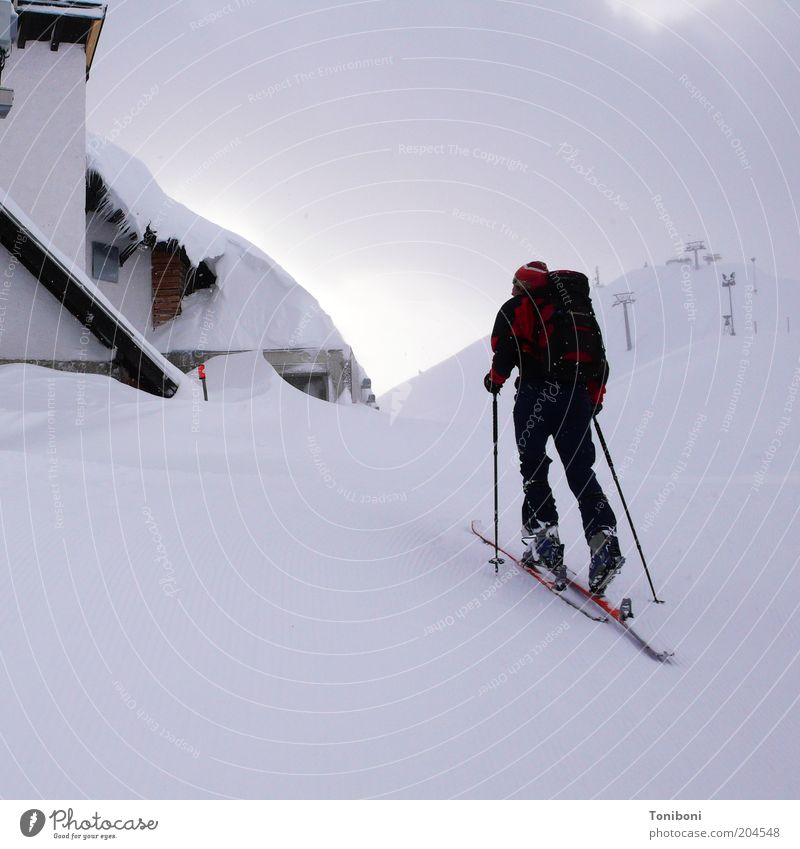 Nature White Clouds Winter Calm Sports Snow Mountain Landscape Gray Healthy Leisure and hobbies Power Fog Alps Skis