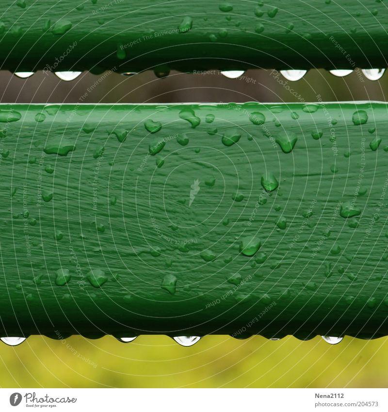 Green Rain Drops of water Wet Drop Fluid Row Damp Wooden board Barrier Water Rainwater Parallel Macro (Extreme close-up) Beaded