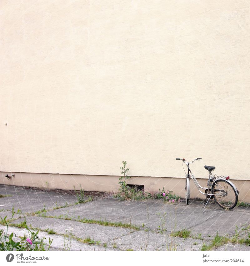 bicycle Plant Building Wall (barrier) Wall (building) Facade Bicycle Yellow Gray Colour photo Exterior shot Deserted Copy Space top Copy Space middle Day