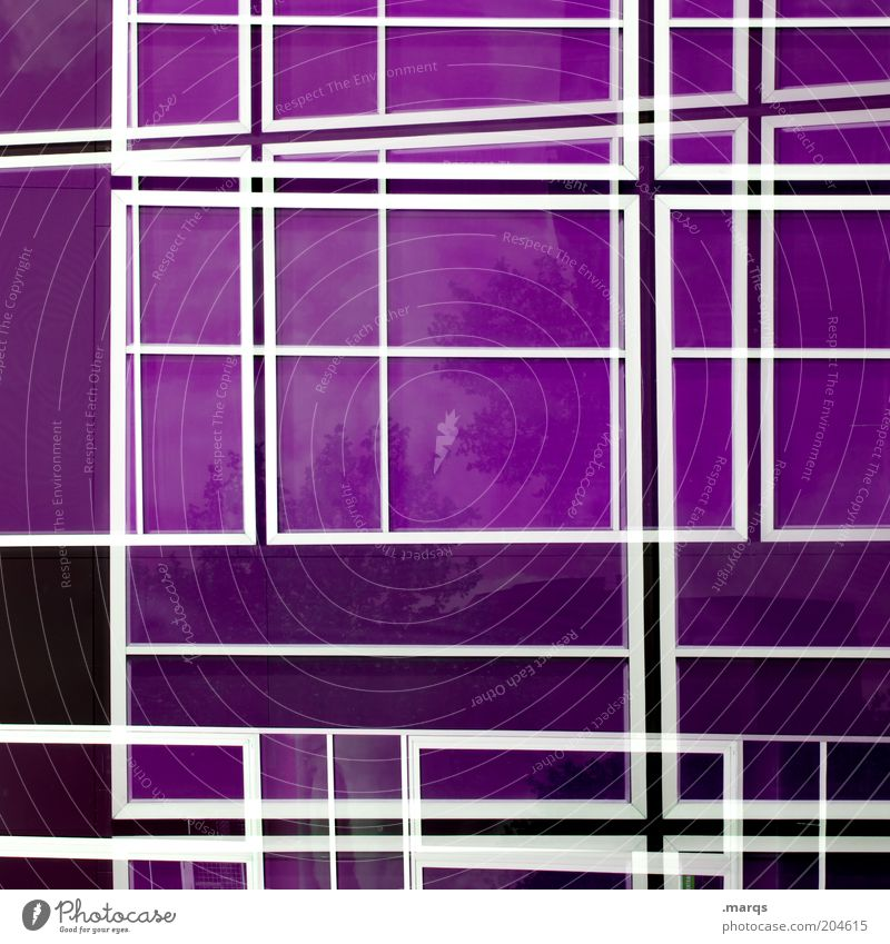 maze Design Line Exceptional Crazy Violet Chaos Colour Background picture Muddled Optical puzzle Cladding Glas facade Reflection Asymmetry Geometry Symmetry