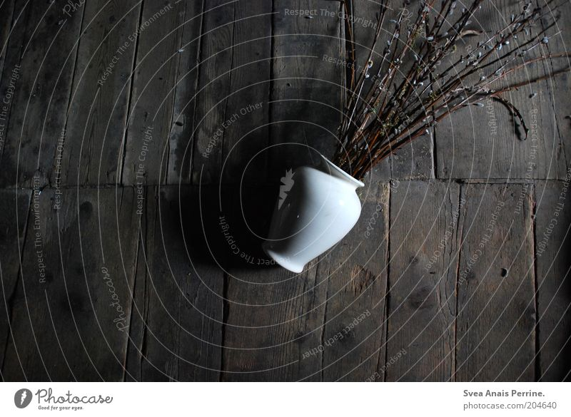 White Plant Black Dark Emotions Wood Sadness Brown Dirty Lie Twig Vase Stagnating Wooden floor Adversity