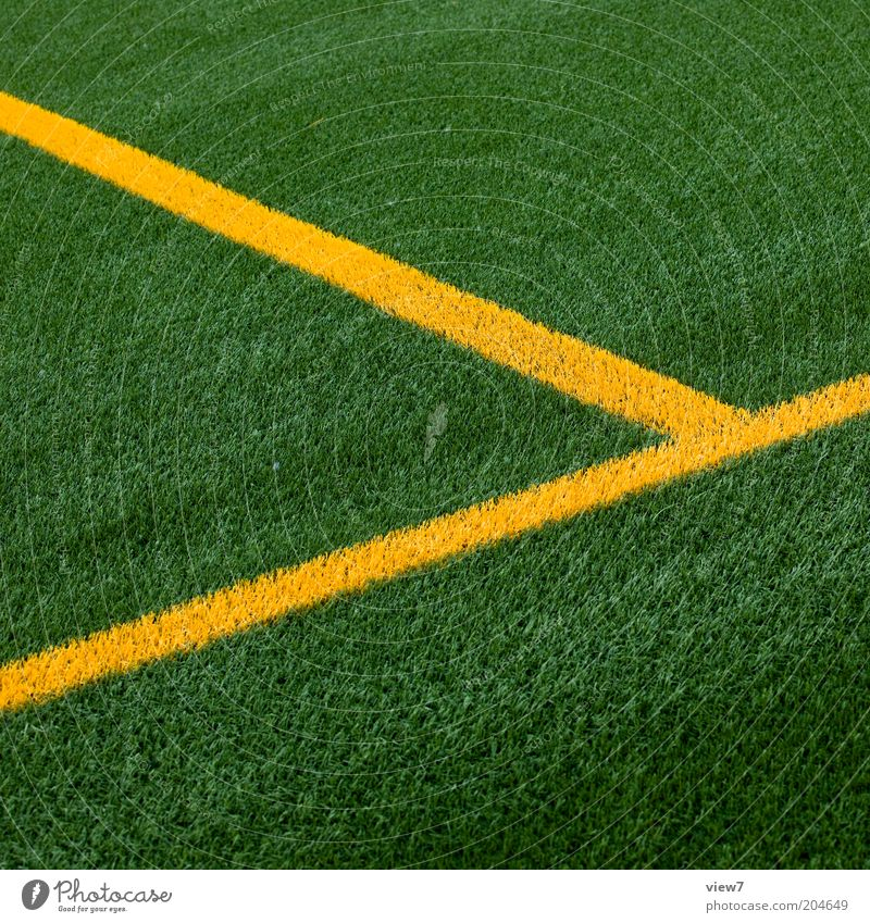 Green Yellow Sports Meadow Line Perspective Modern Arrangement Esthetic New Lawn Authentic Simple Clean Grass surface Pure