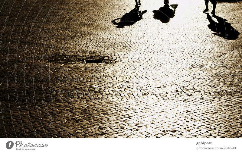 praça da grande sombra Human being Group Lisbon Pedestrian precinct Places Cobblestones Going Joie de vivre (Vitality) Movement Idyll Uniqueness Summer