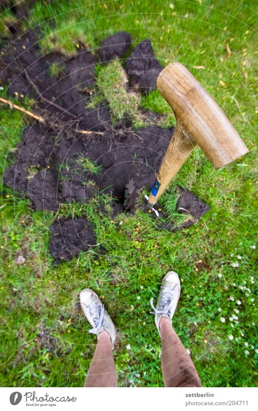 Human being Man Plant Summer Work and employment Grass Feet Legs Earth Lawn Break Stand Gardening Shovel Gardener Dig