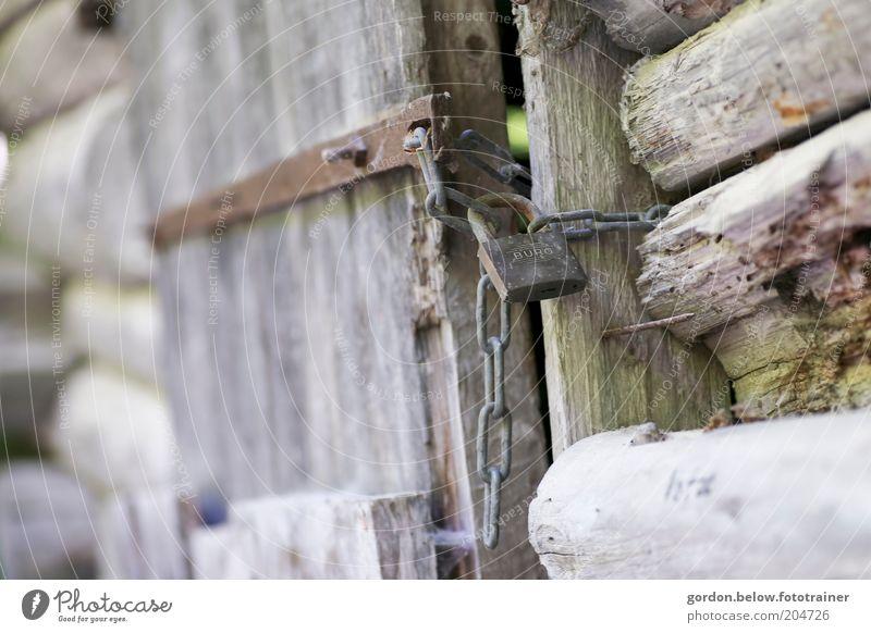 "That's my ""castle"". Wood Lock Protection Colour photo Exterior shot Detail Deserted Blur Padlock Wooden door Wooden hut Chain Slightly open door Old Day"