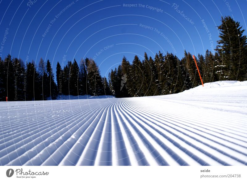 morning hour has fresh slopes in its mouth Winter sports Ski run Nature Landscape Cloudless sky Ice Frost Snow Alps Mountain Infinity Tall Beautiful Cold Wet