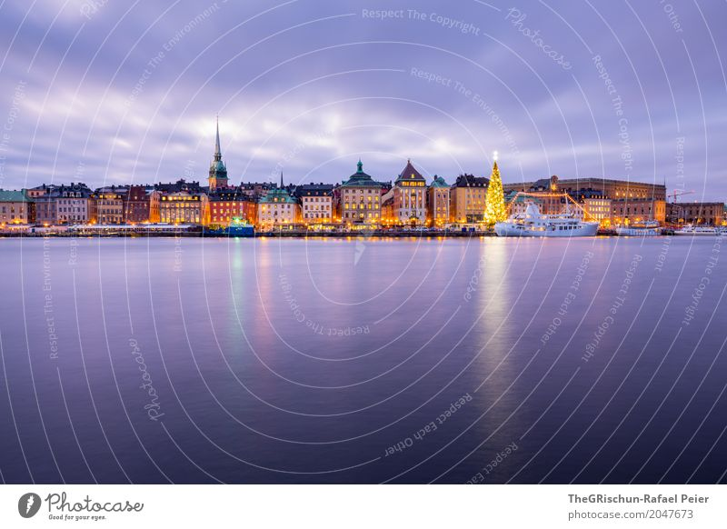 stockholm Town Capital city Palace Blue Yellow Gold Pink White Stockholm Christmas & Advent Tree Christmas tree Skyline Church Reflection Water Old town