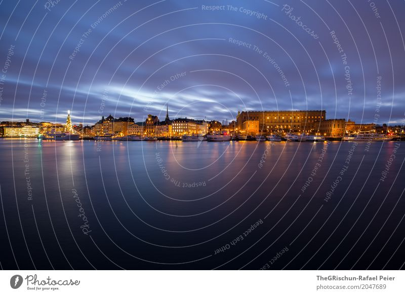 Stockholm Palace Town Capital city Blue Yellow Gold Black Light Tree Christmas tree Sweden House (Residential Structure) Building Old town Reflection Water
