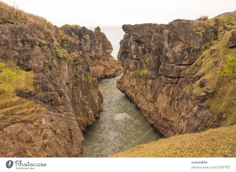 Nature Water Ocean Landscape Coast Environment Earth Esthetic Island Uniqueness Exceptional Elements Bizarre New Zealand Cliff