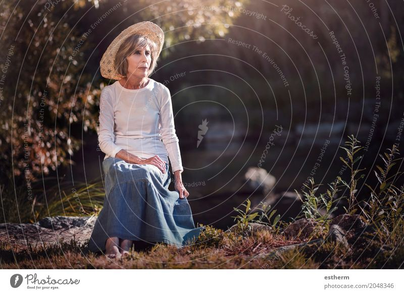 Senior woman sitting in the field Human being Woman Nature Vacation & Travel Old Beautiful Relaxation Loneliness Calm Forest Adults Life Lifestyle Love