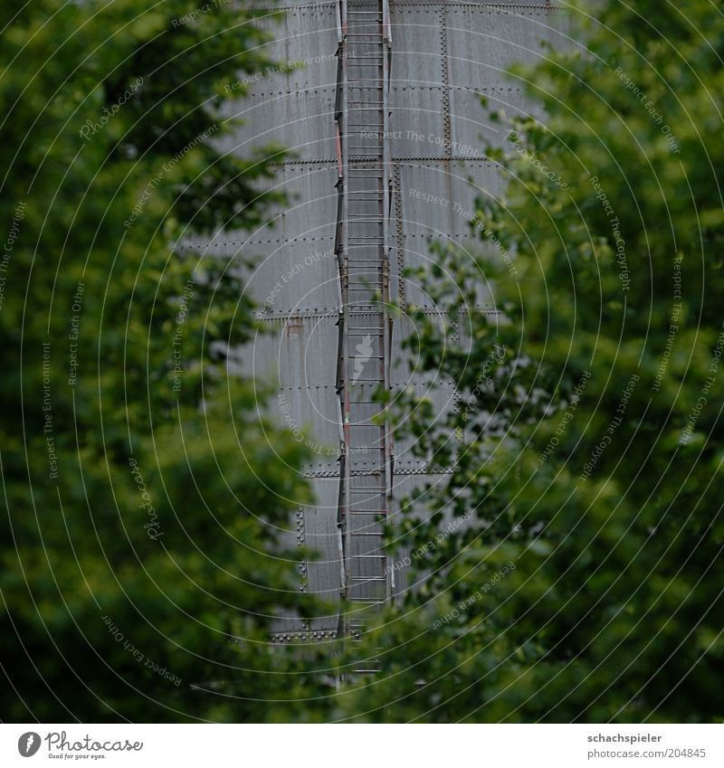 Failure that way Tree Manmade structures Building Steel Gray Green Discover Perspective Colour photo Exterior shot Day Shallow depth of field