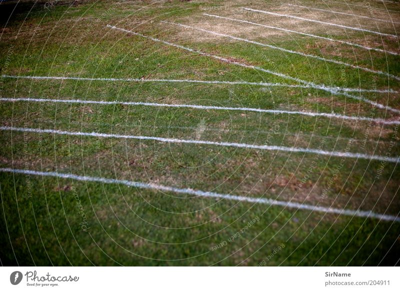 Sports Grass Line Signs and labeling Running sports Grass surface Racing sports Racecourse Sporting event Symmetry Parallel Cross Track and Field