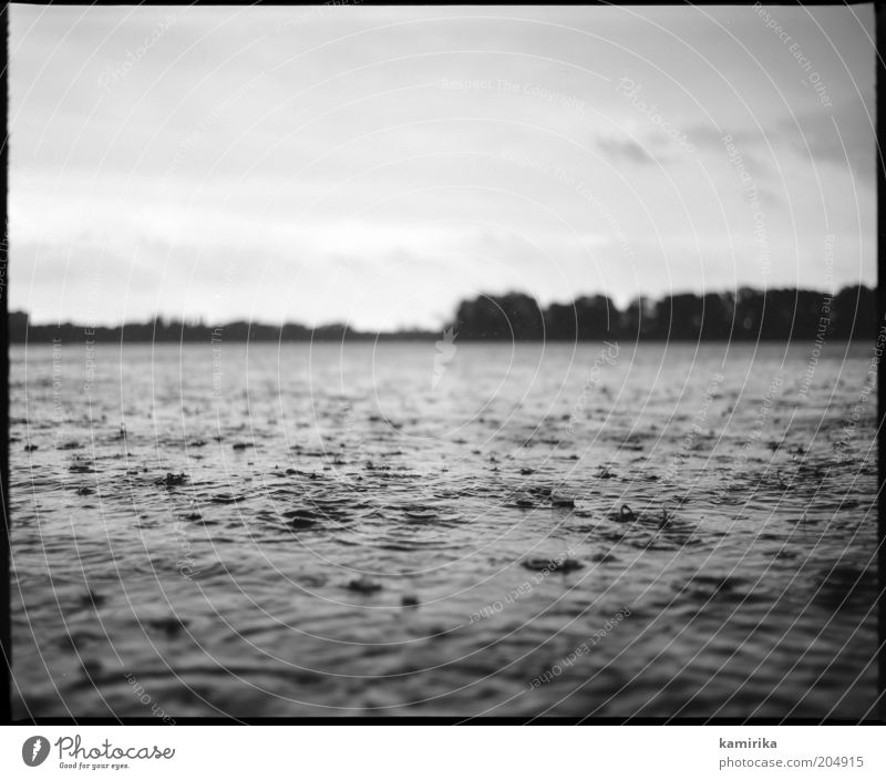 Sky Nature Water Summer Landscape Cold Lake Rain Weather Waves Wet Climate Fresh Drops of water Esthetic Lakeside
