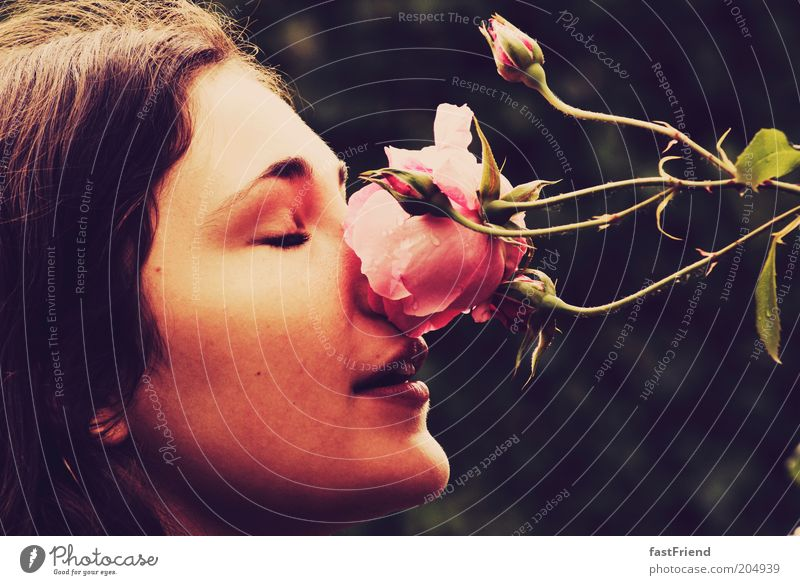 Woman Human being Nature Youth (Young adults) Beautiful Face Calm Feminine Emotions Dream Mouth Adults Nose Fresh Rose Esthetic