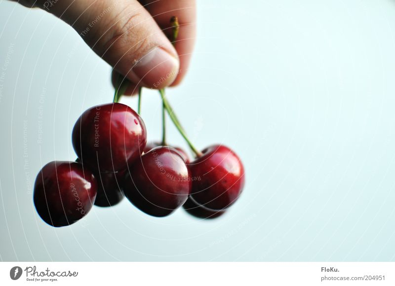 delicious cherries! Food Fruit Nutrition Organic produce Vegetarian diet Diet Hang Glittering Delicious Round Juicy Beautiful Sweet Red White Cherry Stone fruit