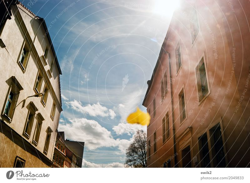 wiper blade Sky Clouds Sun Spring Beautiful weather Plant Leaf Town Populated House (Residential Structure) Wall (barrier) Wall (building) Facade Window