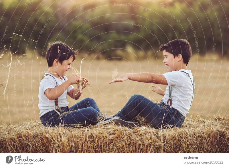 Brothers playing with straw Human being Child Vacation & Travel Summer Joy Lifestyle Spring Love Emotions Boy (child) Laughter Family & Relations Together Friendship Masculine Field