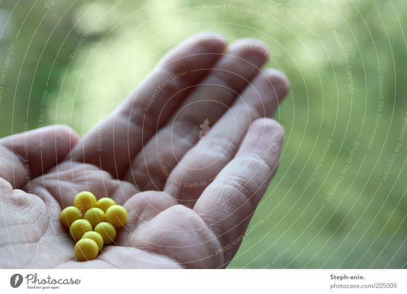 Green Hand Yellow Small Fingers Gift Plastic Sphere Indicate Candy Pearl Give Health care Donate Alternative medicine Blur