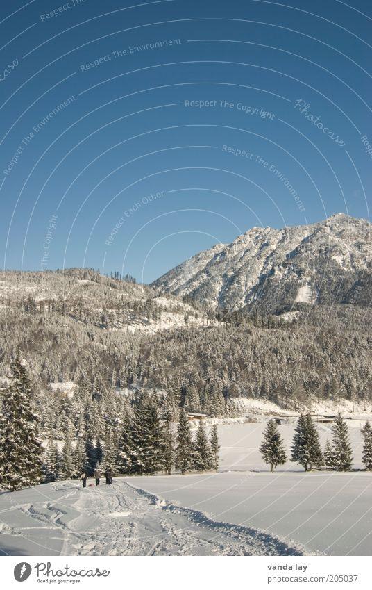 Nature Sky White Winter Forest Cold Snow Mountain Lanes & trails Landscape Environment Alps Elements Beautiful weather Austria Snowscape