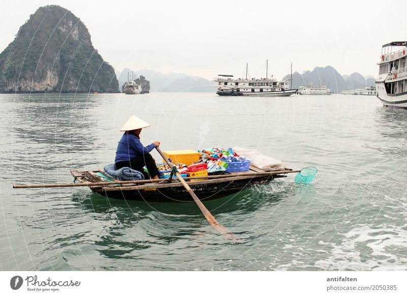 Risk | Boat sales in Vietnam Food Beverage Cold drink Shopping Vacation & Travel Tourism Adventure Sightseeing Cruise Work and employment Merchant Watercraft