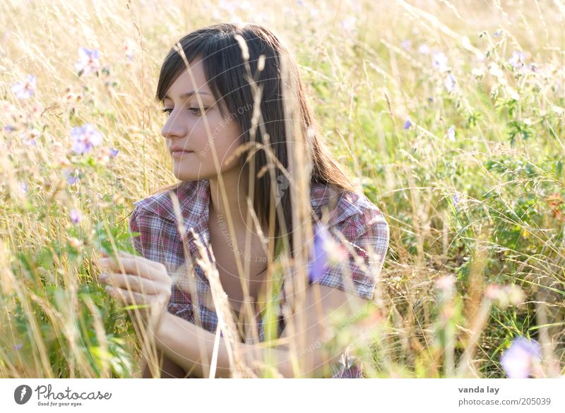 Woman Human being Nature Youth (Young adults) Beautiful Flower Summer Relaxation Meadow Feminine Grass Contentment Adults Sit Serene