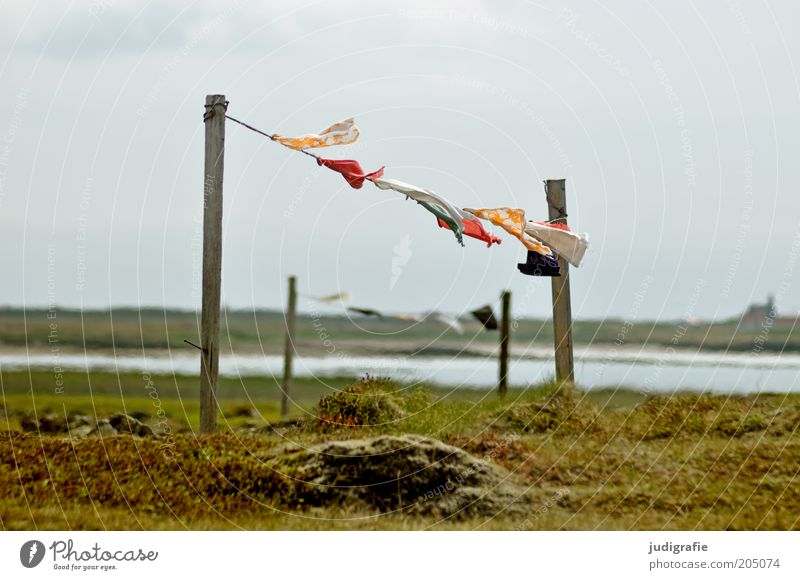 Nature Water Sky Meadow Grass Movement Lake Landscape Wind Weather Environment Rope Flag Cloth Lakeside Iceland