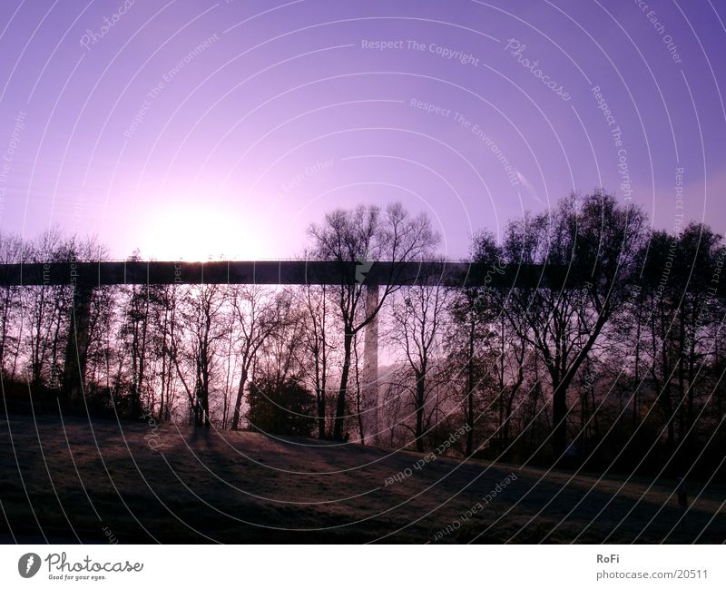 Sky Tree Sun Autumn Fog Bridge Violet Hill
