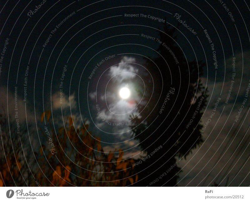 Sky Clouds Dark Autumn Moon Mystic Eerie Full  moon