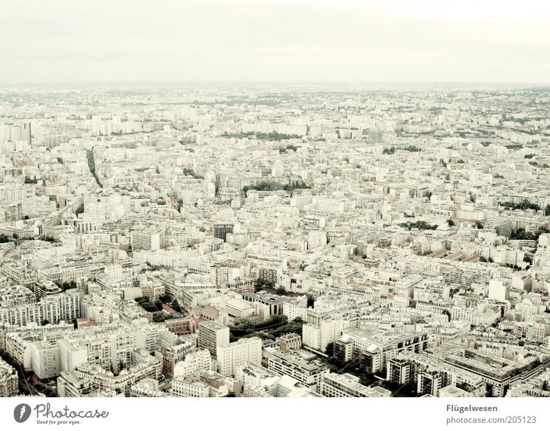 City Summer Far-off places Horizon Trip Infinity Paris Vantage point France Downtown Capital city Famousness Old town Review Eiffel Tower Overview