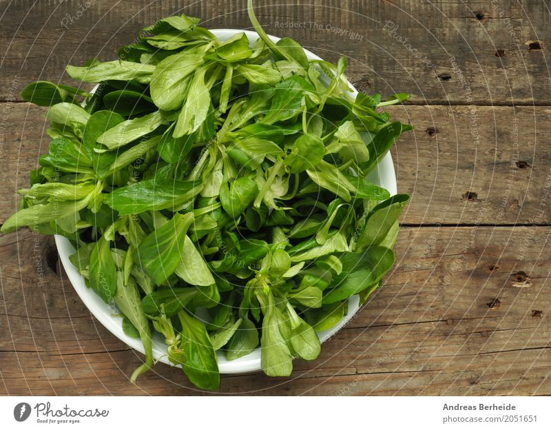 Organic lamb's lettuce Lettuce Salad Organic produce Vegetarian diet Lifestyle Delicious Healthy lambs make organic table green Green salad food vegetarian