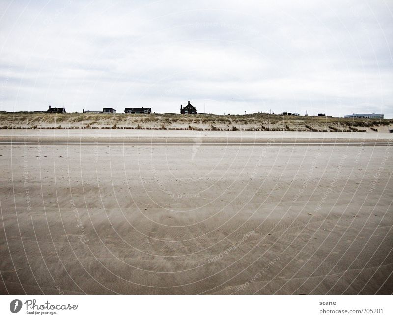 Dutch Beach Summer Ocean Sand Air Sky Clouds Coast North Sea Dune Netherlands Beach hut Blue Brown Gray White Nature Subdued colour Exterior shot Deserted