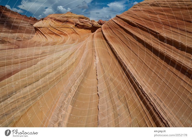 clenched Nature Landscape Rock Desert Exceptional Orange Adventure Bizarre Uniqueness Climate Vacation & Travel Surrealism Environmental protection Transience