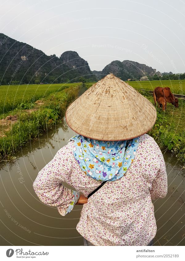 conical cap Vacation & Travel Tourism Trip Adventure Far-off places Freedom Sightseeing Work and employment Rice farmer Agriculture Forestry Feminine Woman