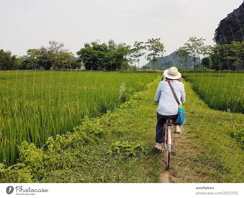 Beautiful bike route Vacation & Travel Tourism Trip Adventure Far-off places Freedom Paddy field Cycling Feminine Woman Adults Body Back Legs Feet 1 Human being
