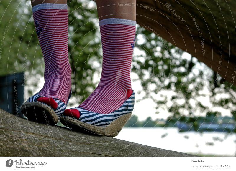 White Blue Red Feet Footwear Legs In pairs Stripe Tree trunk Stockings Chic Balance Striped Textiles Human being Striped socks