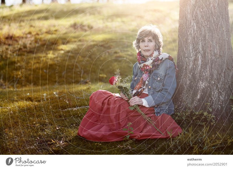 Happy senior woman sitting on the grass Human being Woman Beautiful Joy Life Lifestyle Love Senior citizen Feminine Garden Park Elegant Idyll Sit