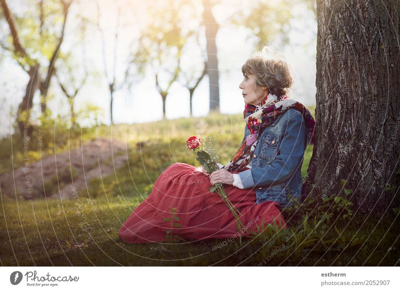 pensive senior woman sitting on the grass Human being Woman Loneliness Calm Adults Life Lifestyle Sadness Love Senior citizen Feminine Family & Relations Garden