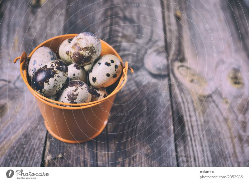 Fresh quail eggs Eating Breakfast Diet Crockery Table Easter Wood Bright Small Natural Above Gray Tradition Bucket eco Organic Farm Tasty healthy Shell Fragile