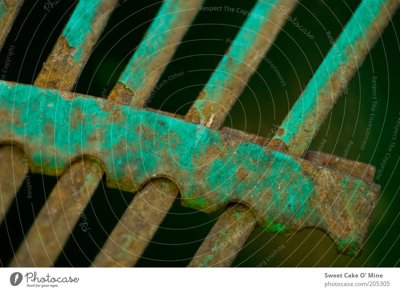 Old Green Metal Brown Broken Perspective Rust Row Macro (Extreme close-up) Beaded Detail Defective Metal post Ravages of time