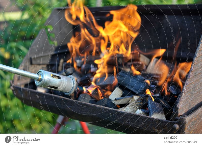 Nature Environment Fire Authentic Leisure and hobbies Barbecue (event) Flame Barbecue (apparatus) Coal Ignite Cooking & Baking Charcoal (cooking)